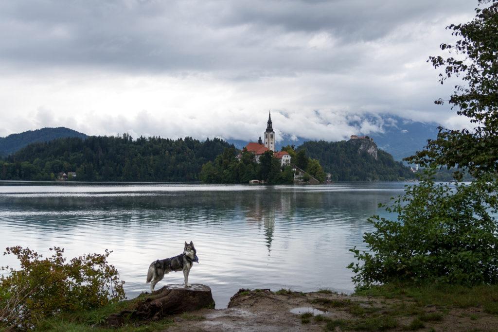 Slowenien — Das grüne Juwel Europas