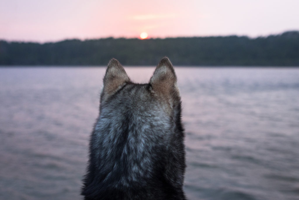 Mikroabenteuer: Eine Nacht am See