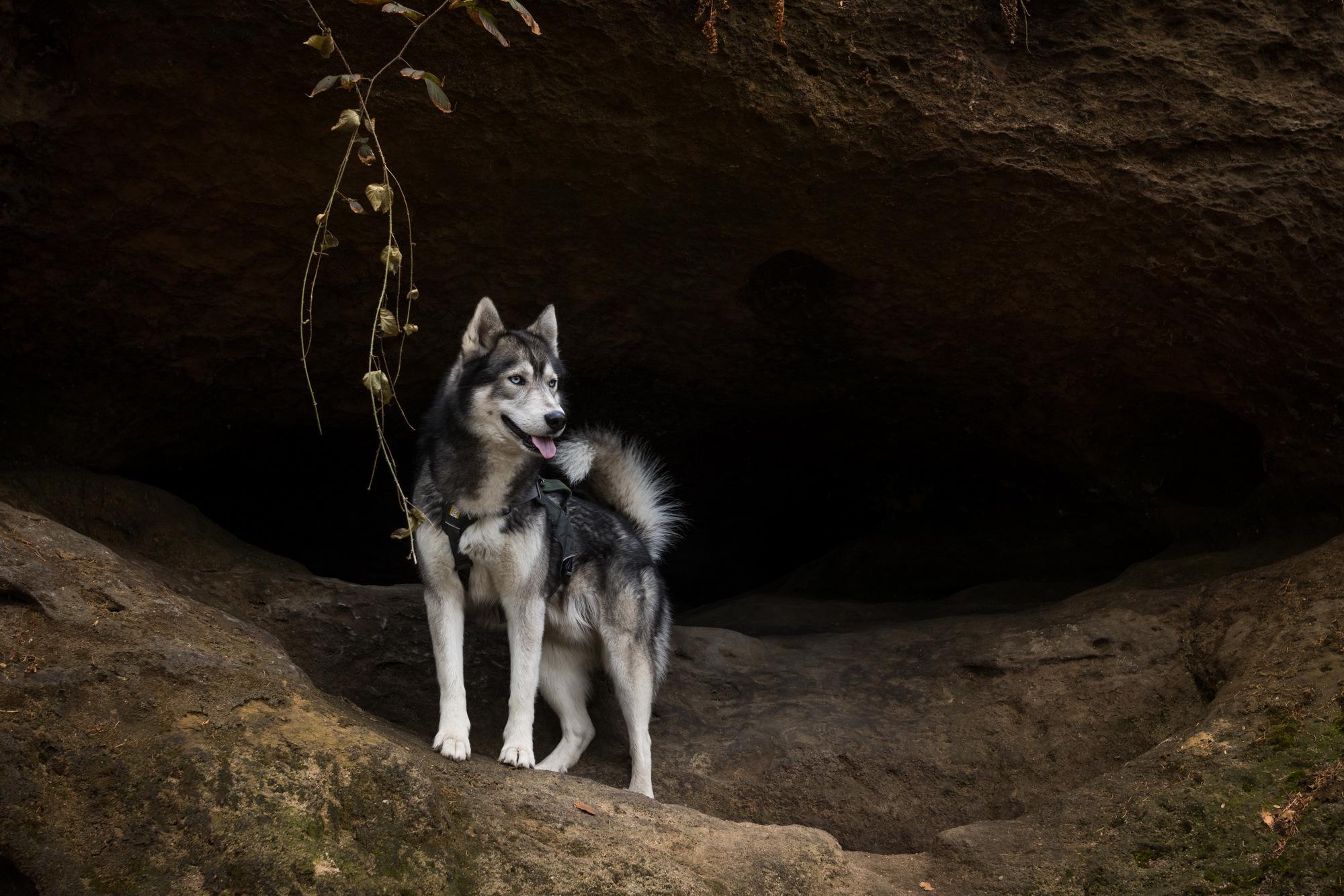 Eine der vielen kleinen Höhlen am Quirl