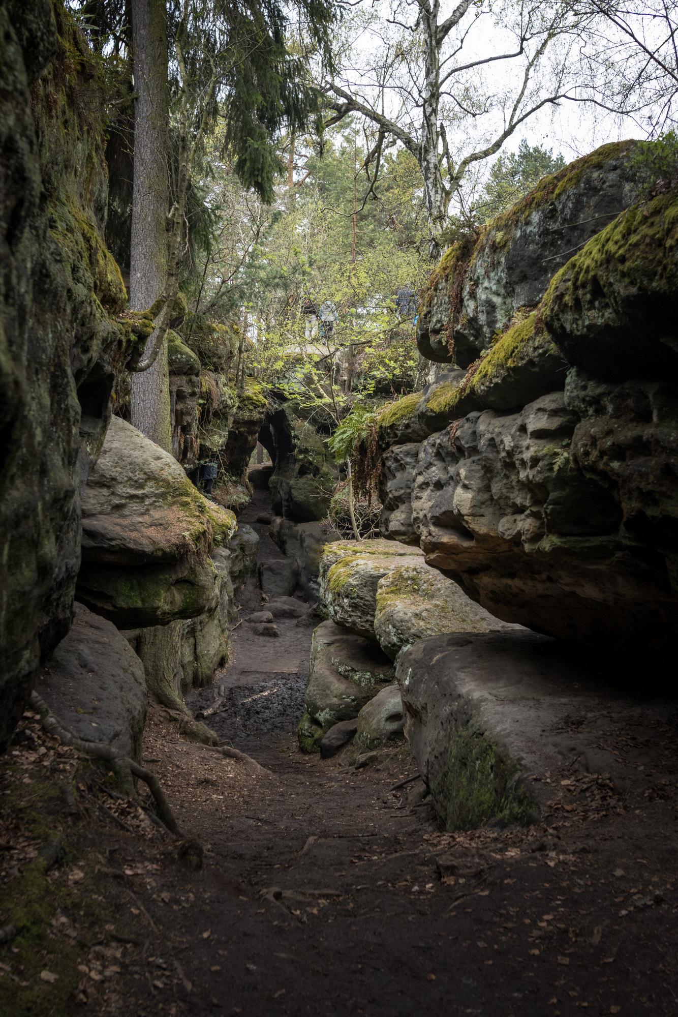 Im Labyrinth von Kleinhennersdorf